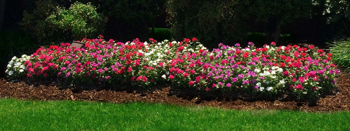 Seasonal Color and Flowerbed Maintenance